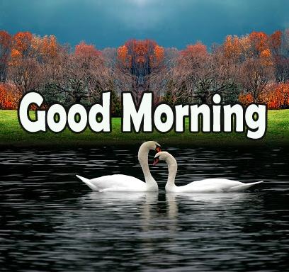 Happy Morning 27