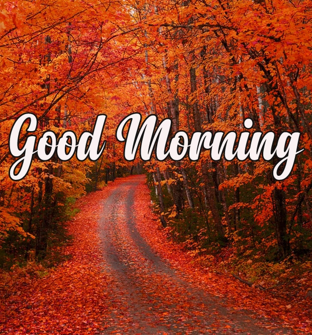 Happy Morning 7