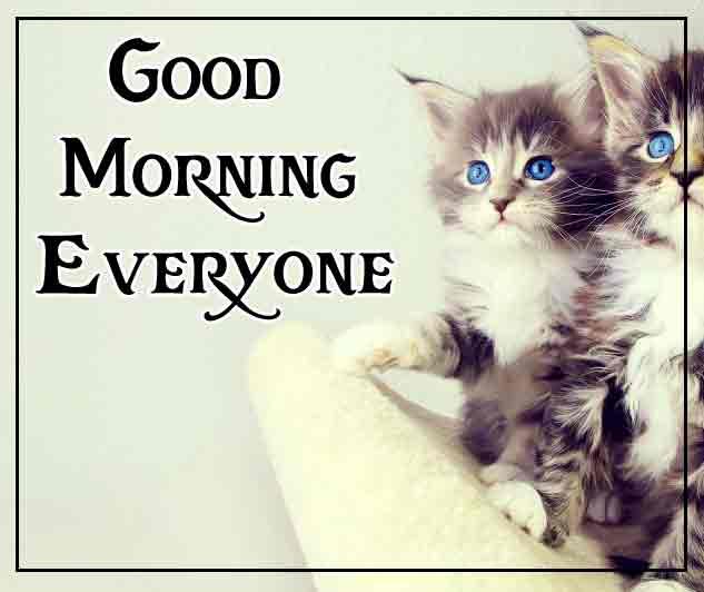 Pinterest Good Morning Images 101