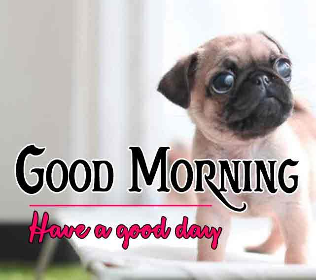 Pinterest Good Morning Images 62