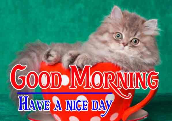 Pinterest Good Morning Images 71