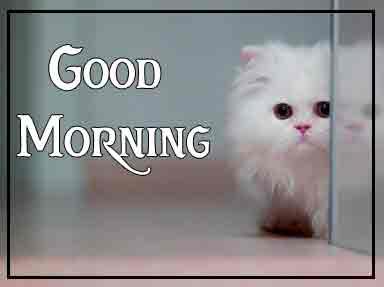 Pinterest Good Morning Images 78