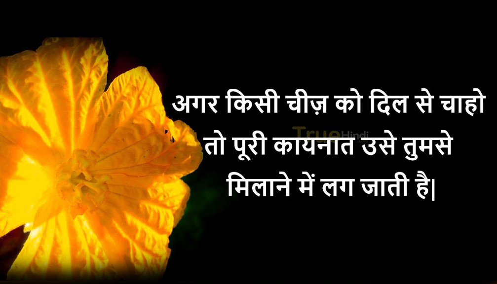 Shayari Wallpaper 49