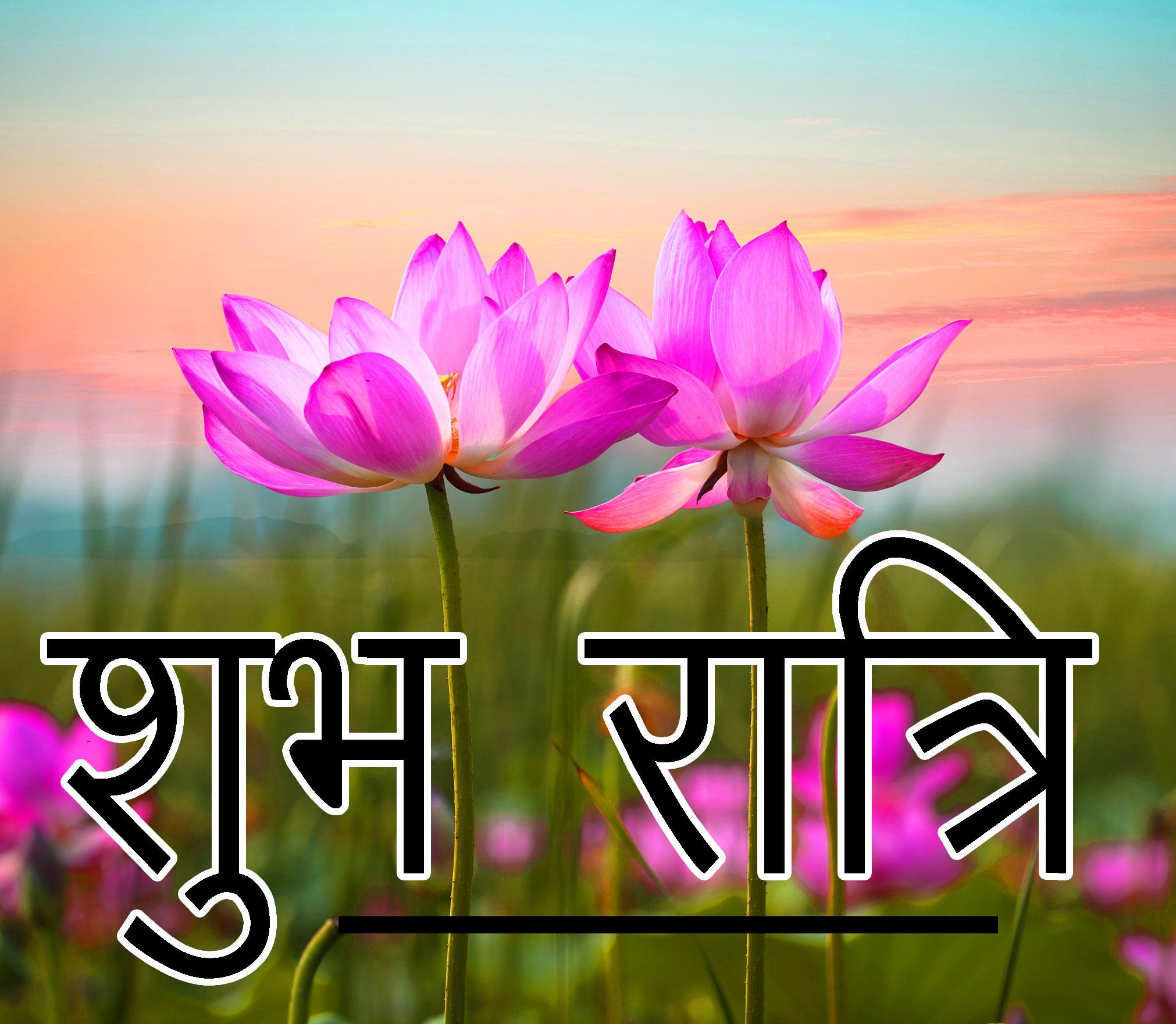 Shubh Ratri Wallpaper 10