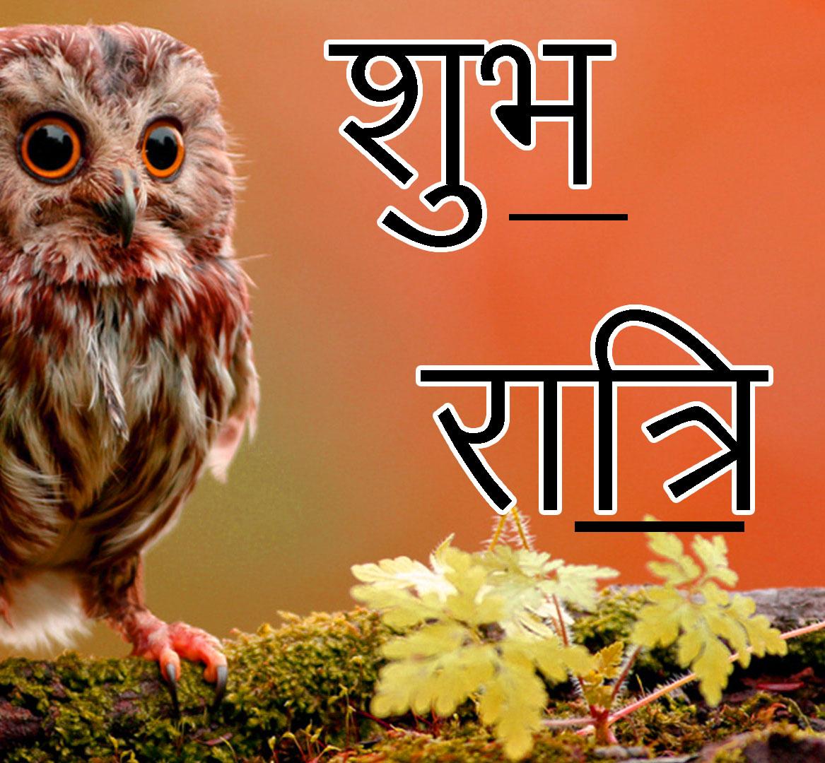 Shubh Ratri Wallpaper 18