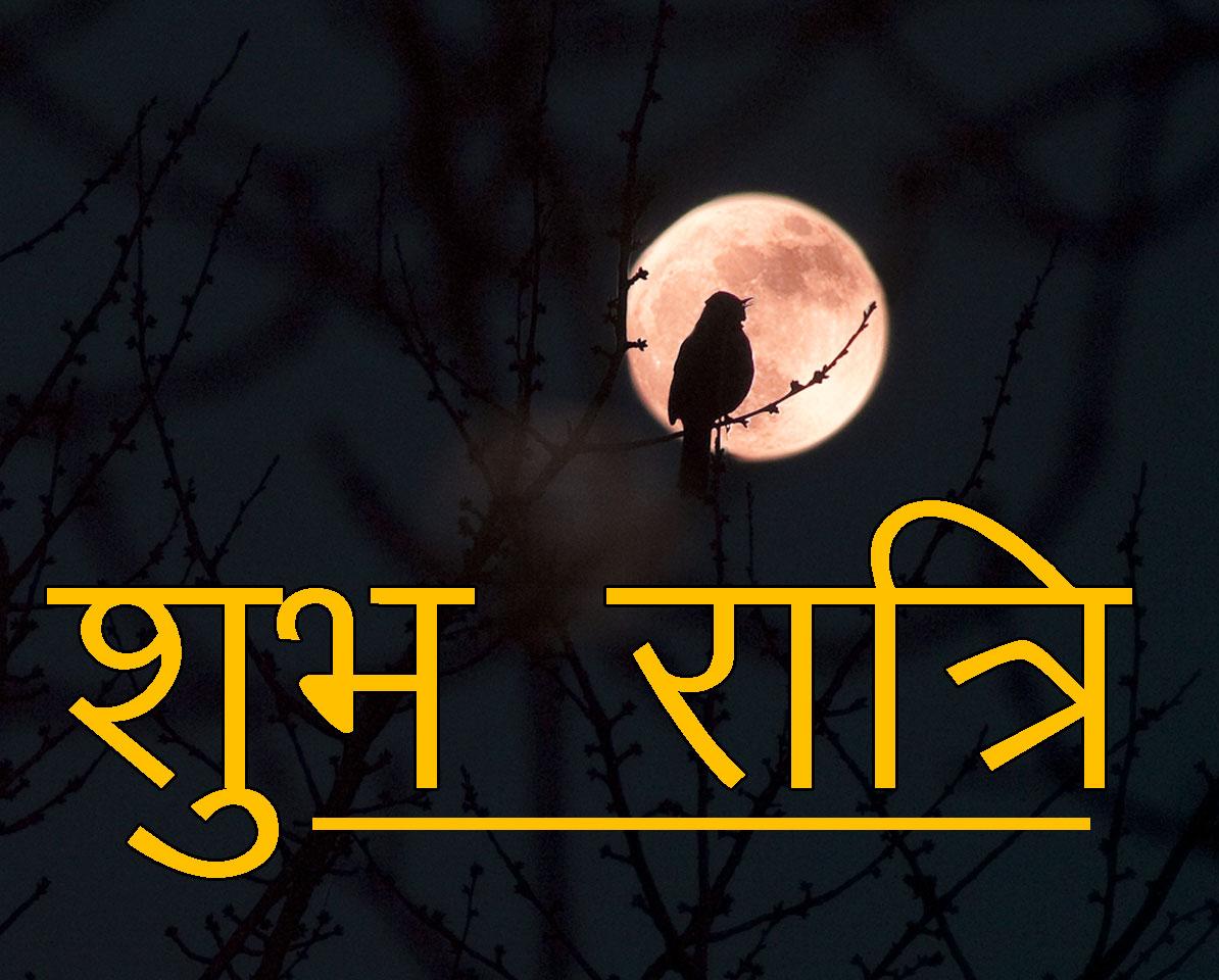 Shubh Ratri Wallpaper 20