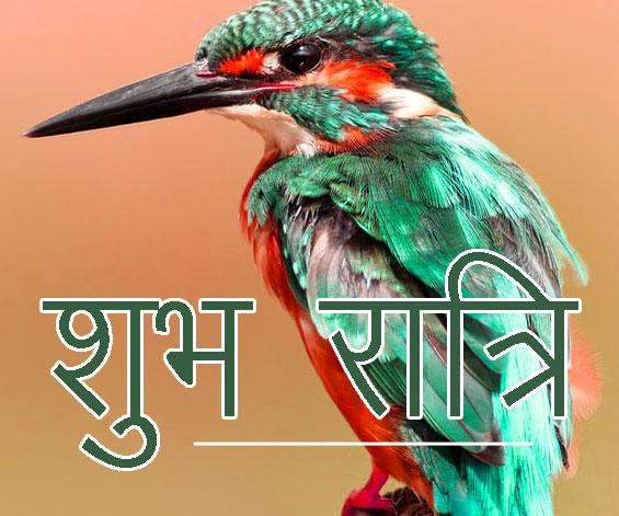 Shubh Ratri Wallpaper 29