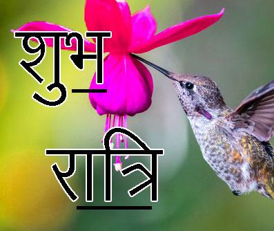 Shubh Ratri Wallpaper 34