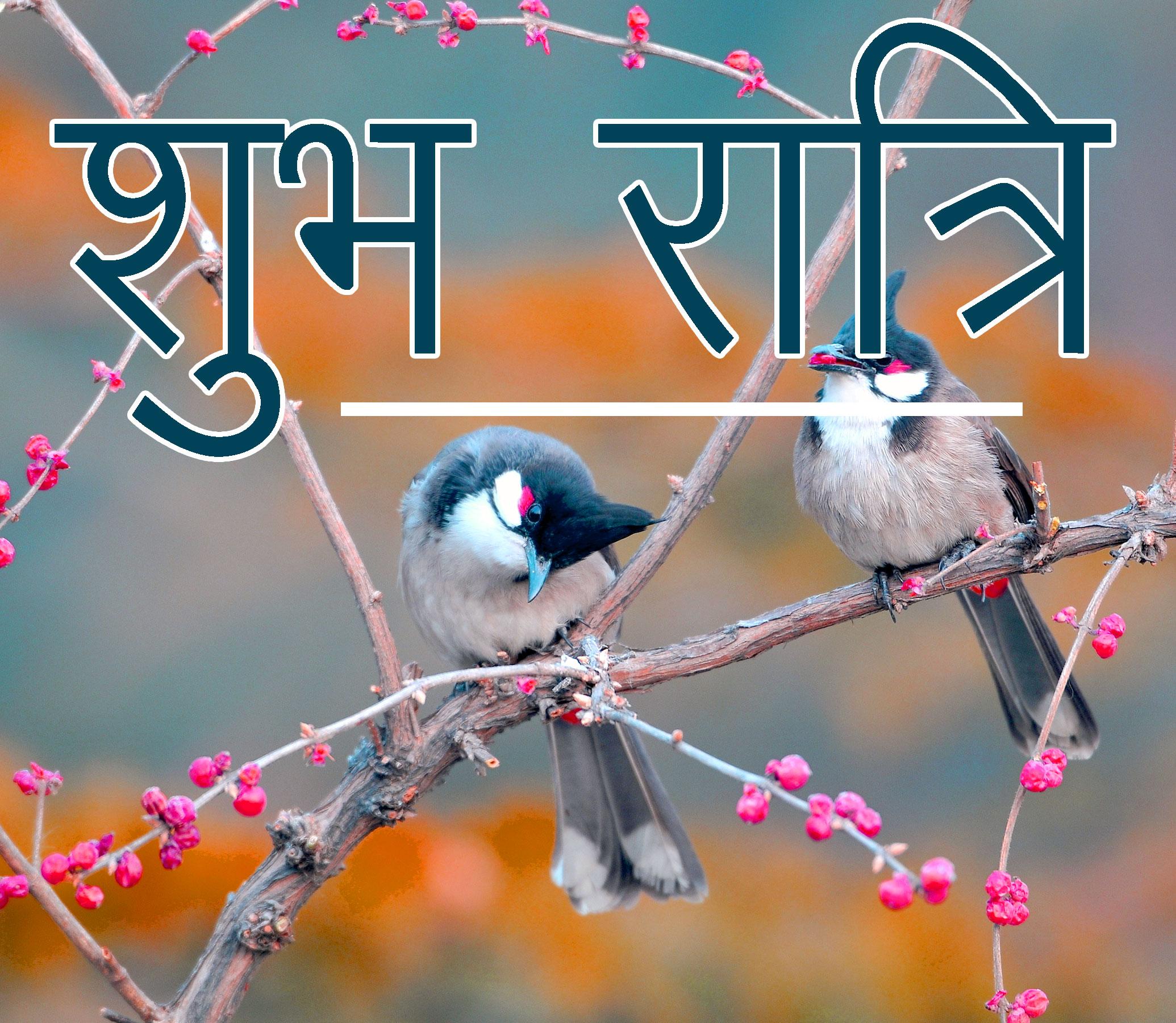 Shubh Ratri Wallpaper 38