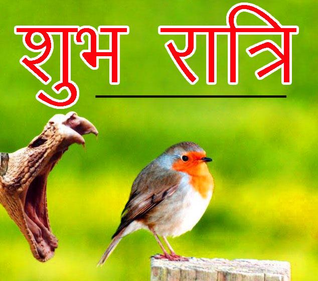Shubh Ratri Wallpaper 58