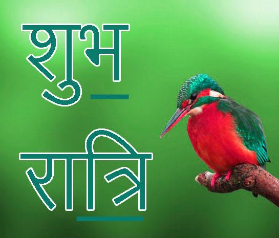 Shubh Ratri Wallpaper 6