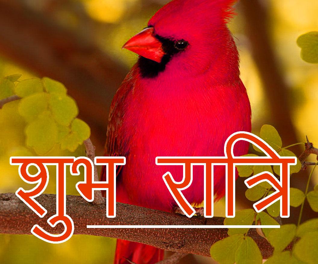 Shubh Ratri Wallpaper 62