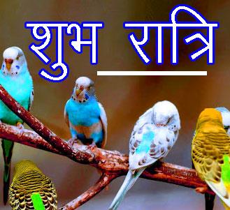Shubh Ratri Wallpaper 73