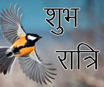 Shubh Ratri Wallpaper 74