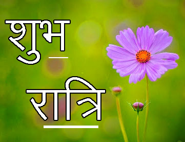 Shubh Ratri Wallpaper 79