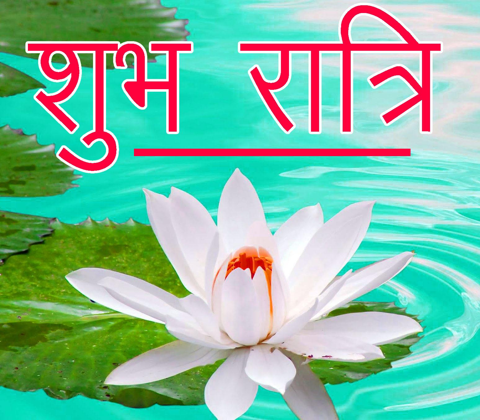 Shubh Ratri Wallpaper 8