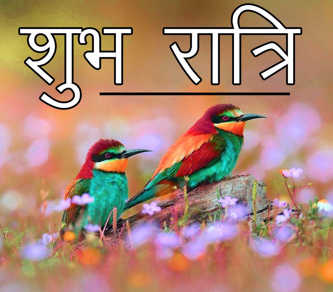 Shubh Ratri Wallpaper 91