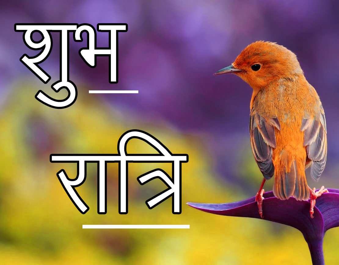 Shubh Ratri Wallpaper 92