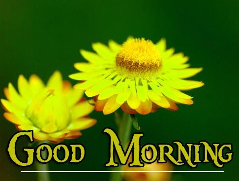 Special Good Morning Wallpaper 105