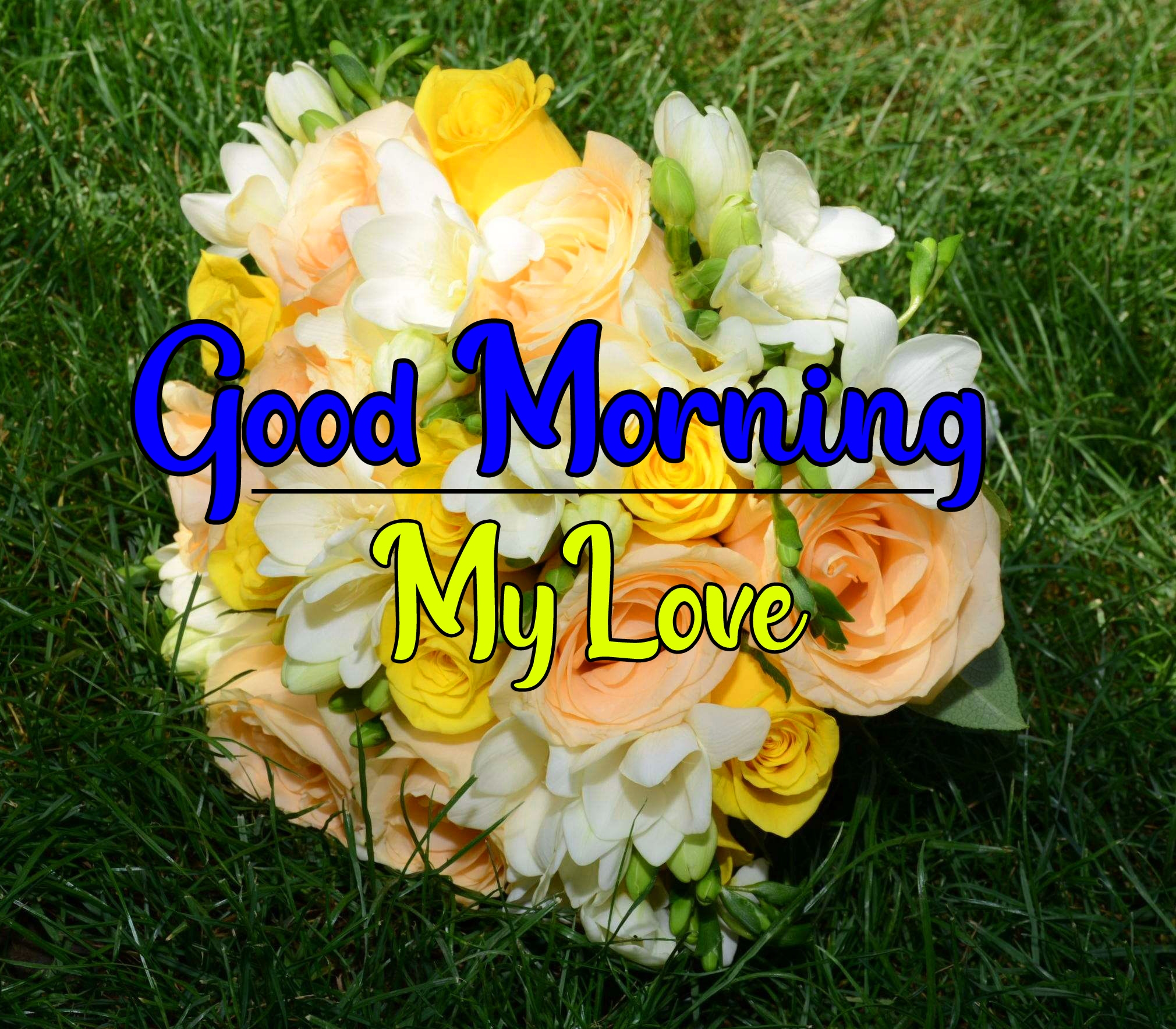 Special Good Morning Wallpaper 25