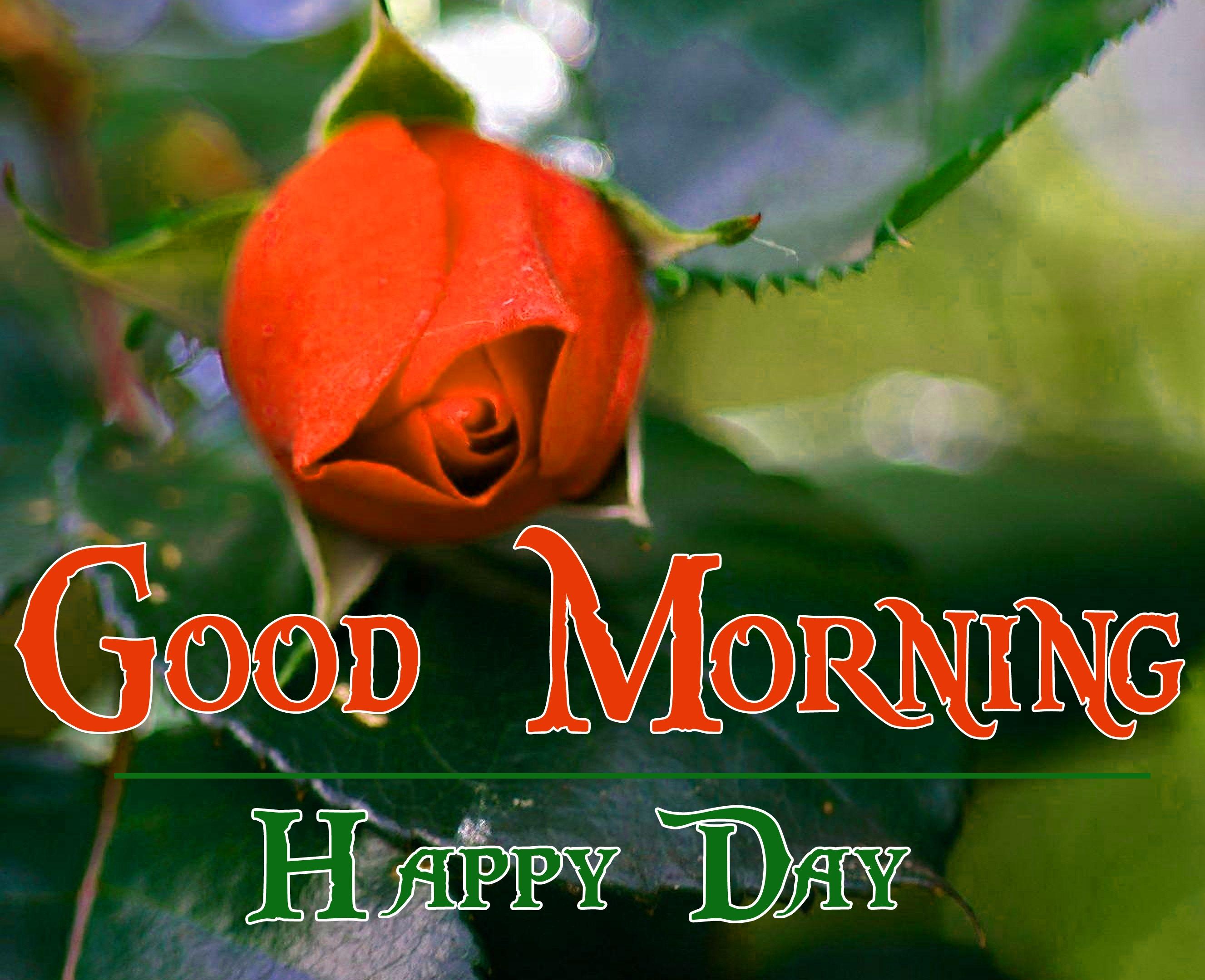 Special Good Morning Wallpaper 6