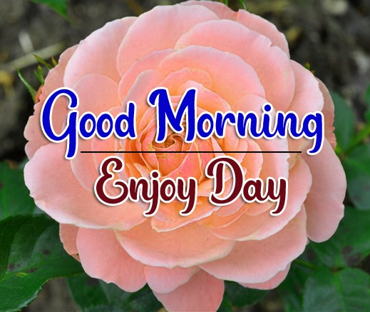 Special Good Morning Wallpaper 67