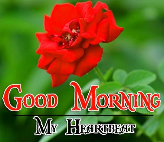 Special Good Morning Wallpaper 75