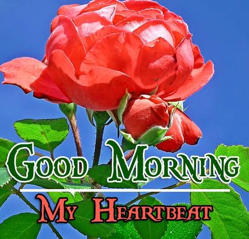 Special Good Morning Wallpaper 77