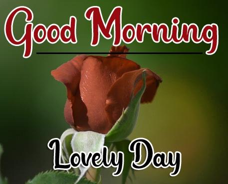 Special Good Morning Wallpaper 82