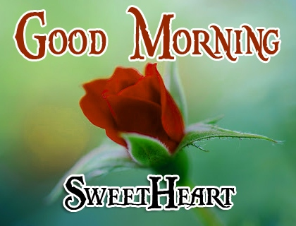 Special Good Morning Wallpaper 95