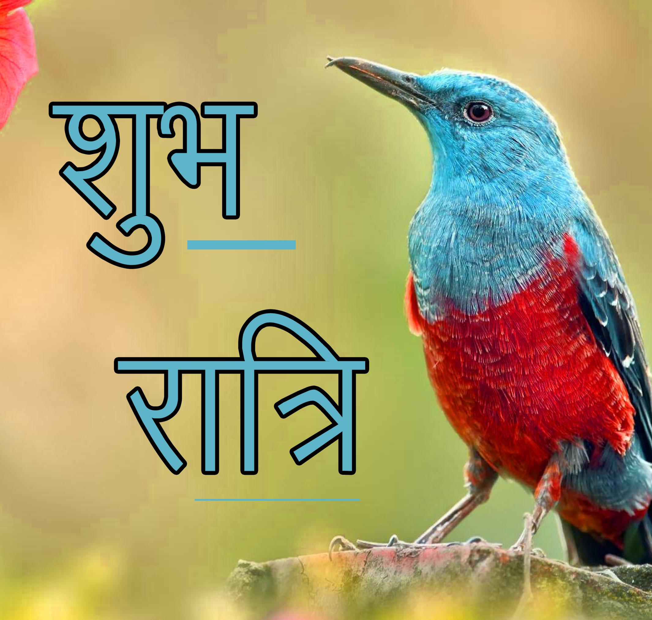 Subh Ratri 17