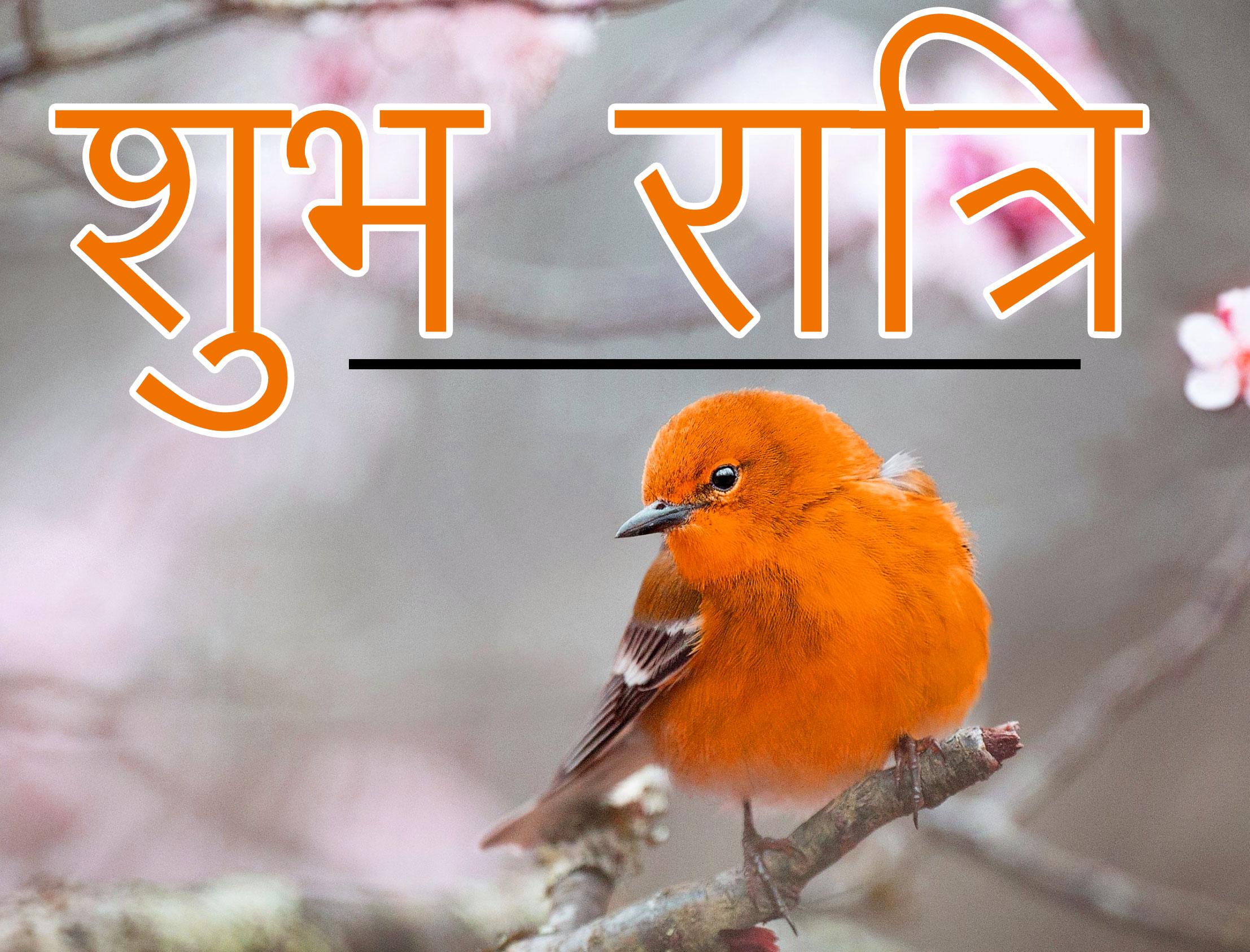 Subh Ratri 23