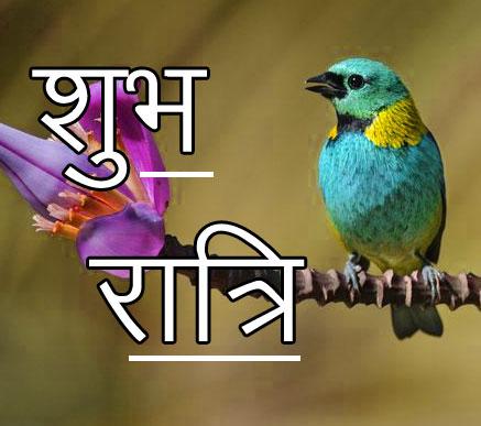 Subh Ratri 24