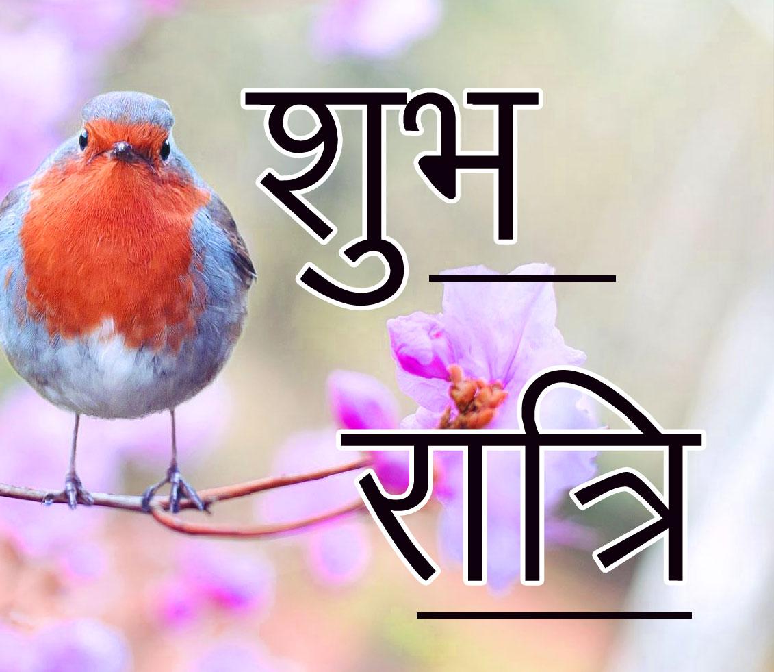 Subh Ratri 29