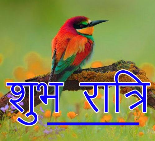 Subh Ratri 36