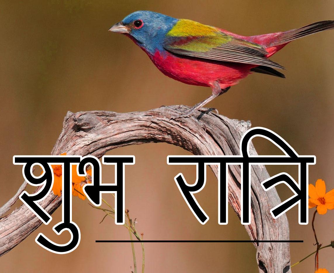 Subh Ratri 51