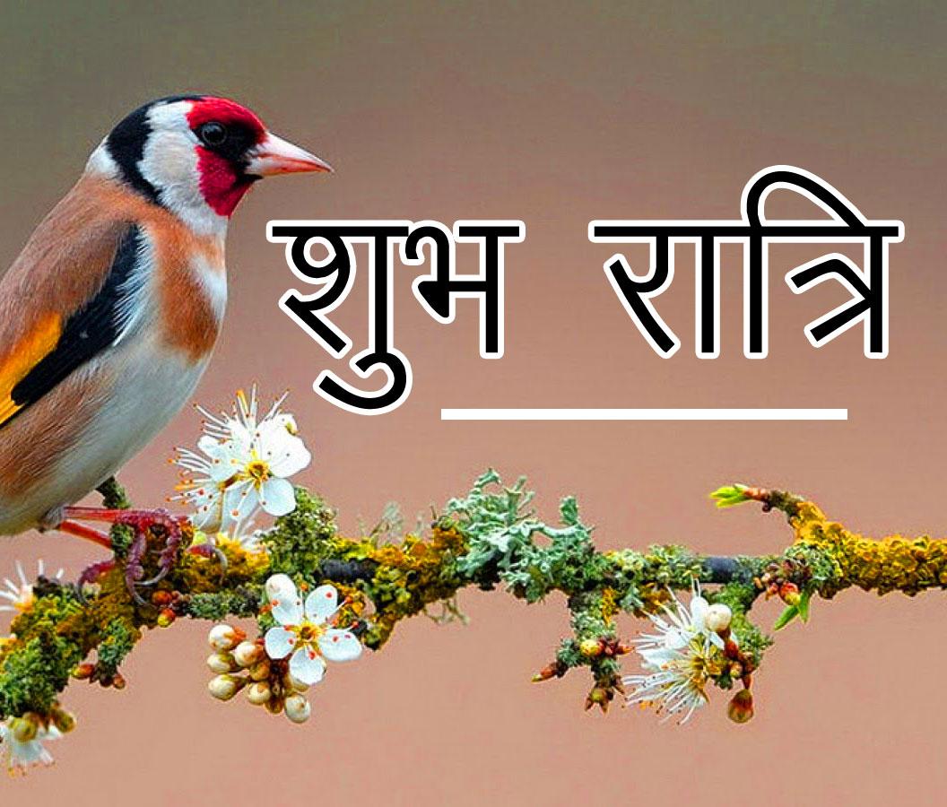 Subh Ratri 56