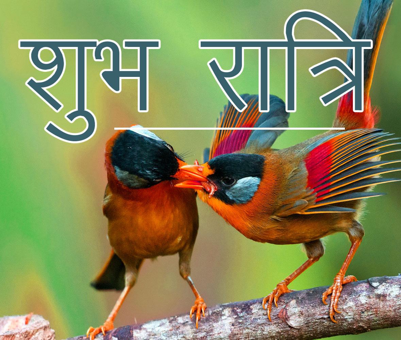 Subh Ratri 59