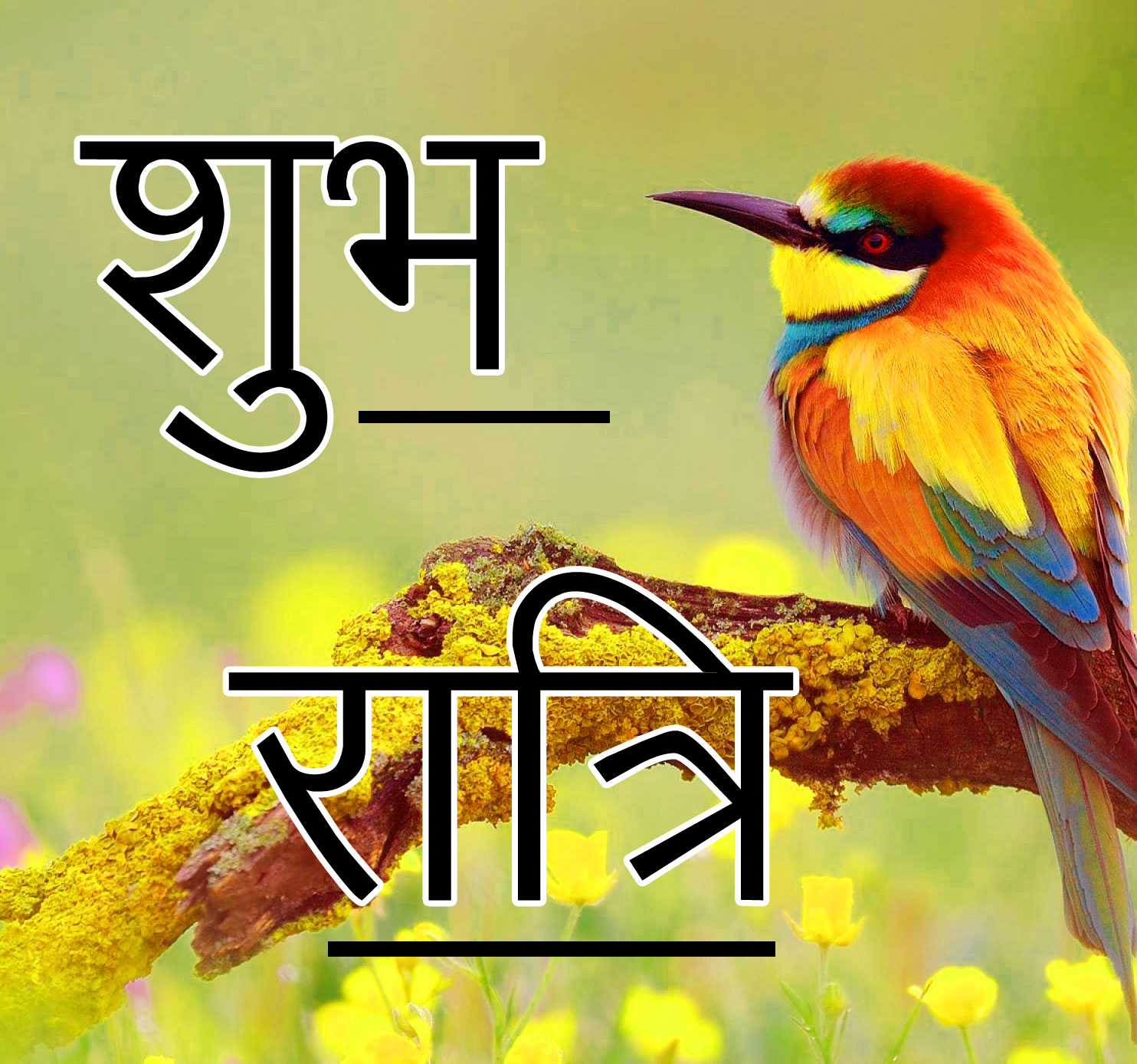 Subh Ratri 72