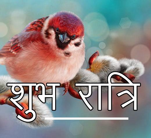 Subh Ratri 88