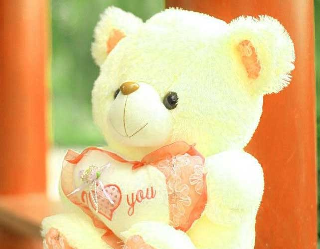 Teddy Bear Images Pics HD photo Wallpaper