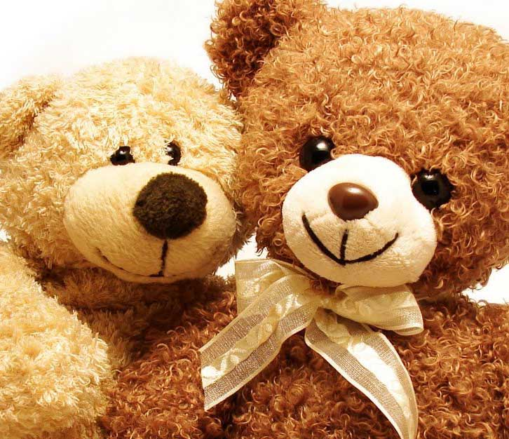 Beautiful Teddy Bear Images Pics HD Wallpaper pics Download
