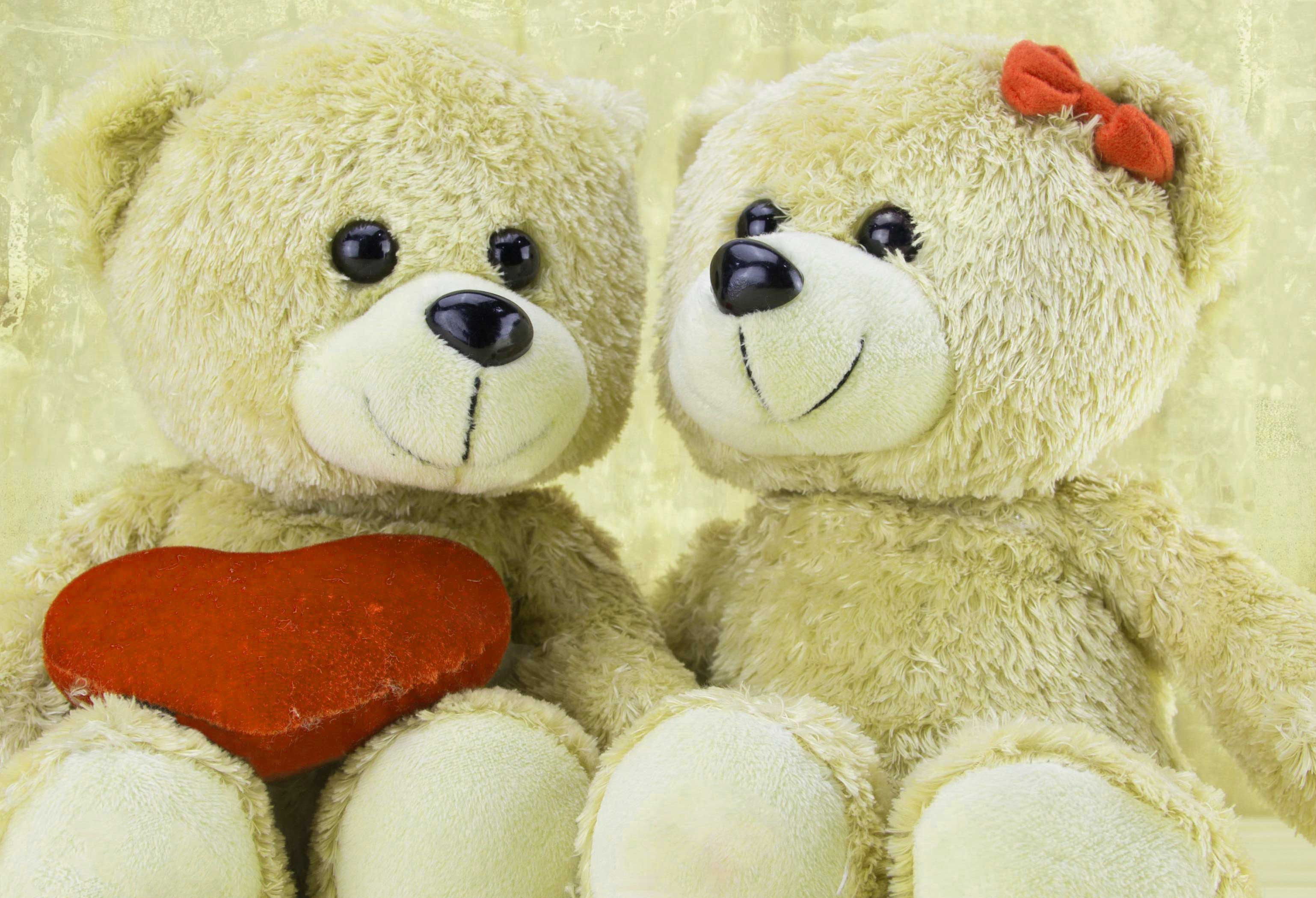 Teddy Bear Photo Pictures Free Download