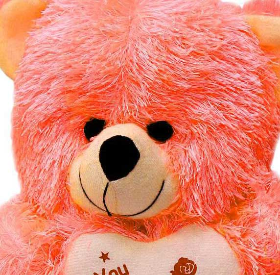 Best Free Teddy Bear Photo Pics Download