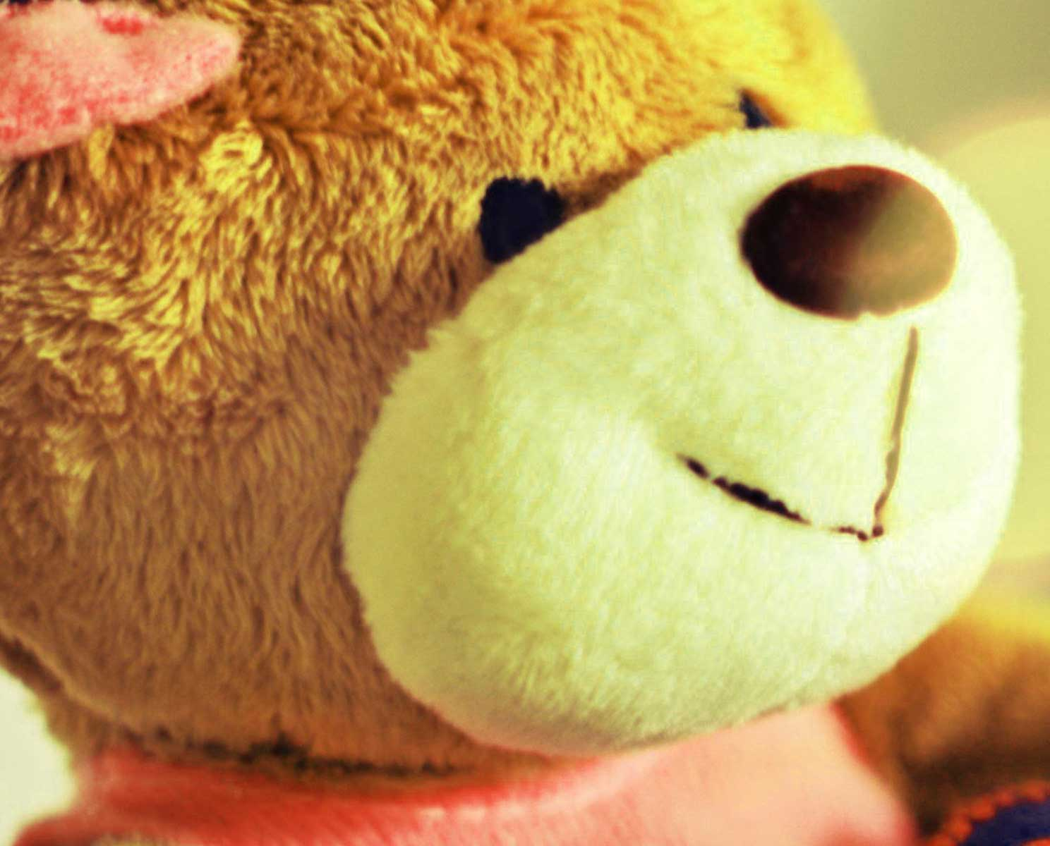 Teddy Bear 105