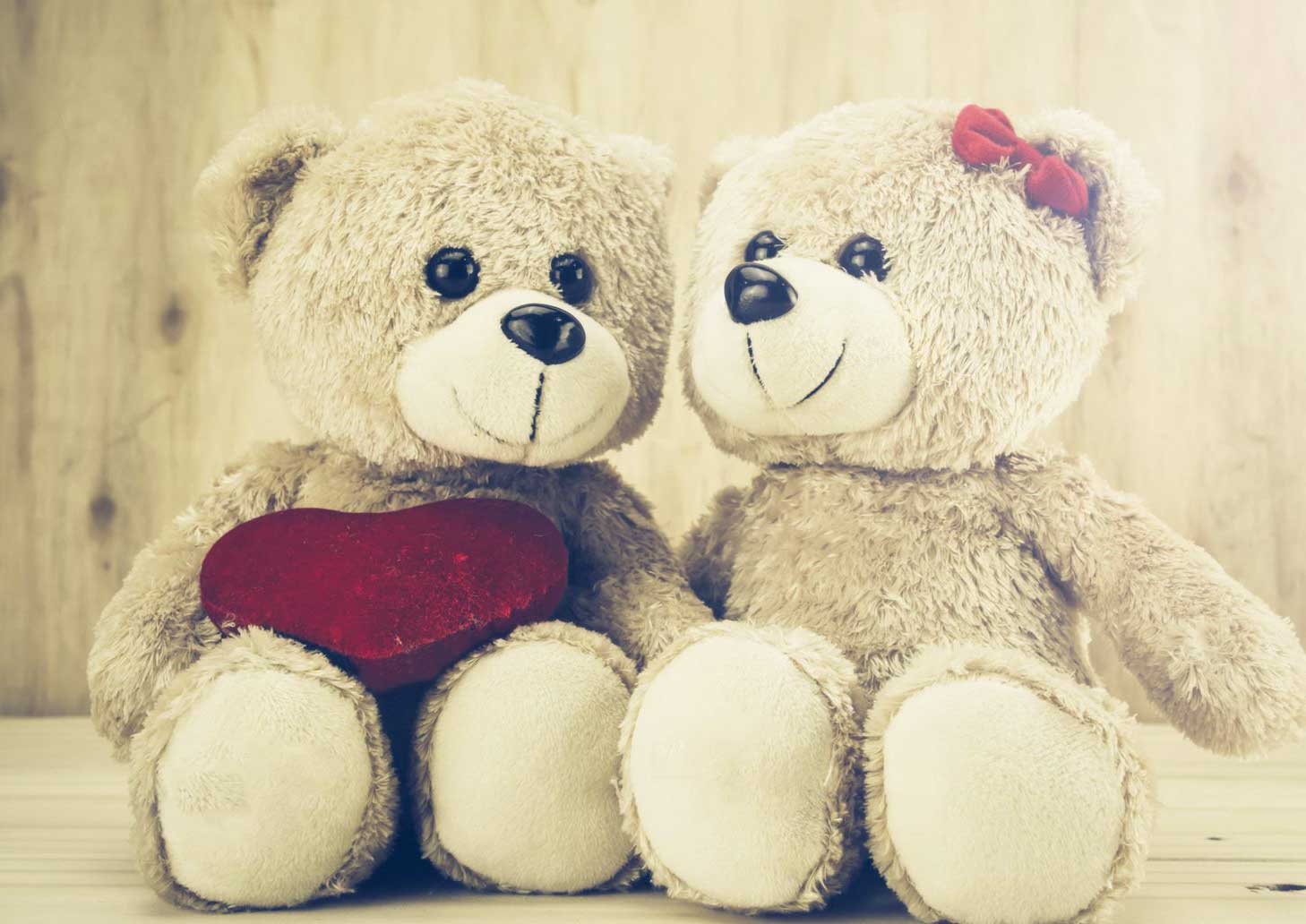 Beautiful Teddy Bear Images Pics HD Pics Photo Download