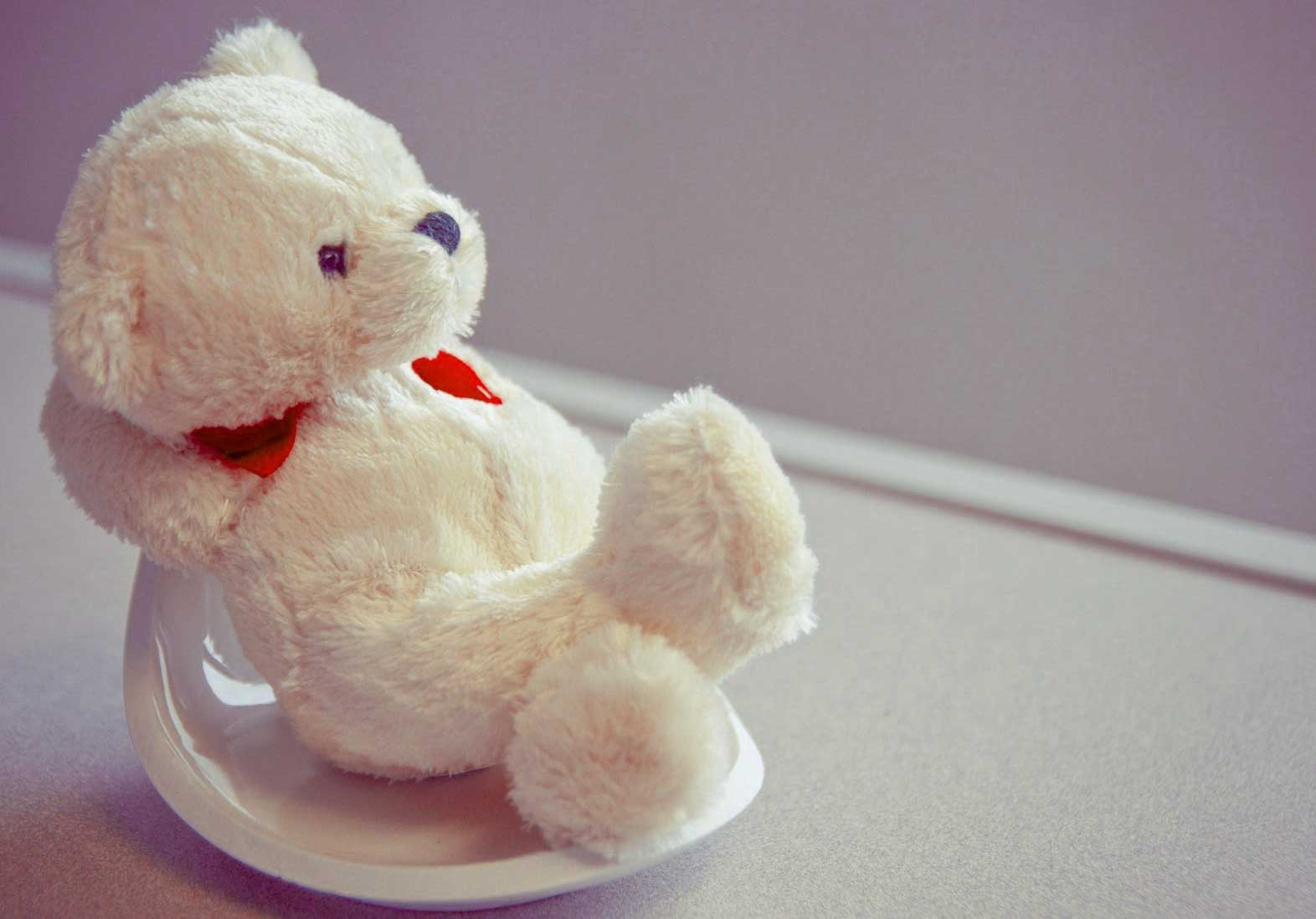 Beautiful Teddy Bear Images Pics HD Pics Download