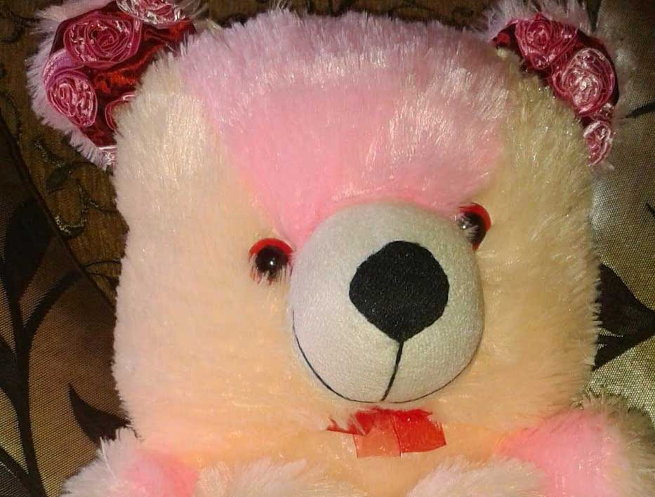 New Free Beautiful Teddy Bear Images Pics HD Pics Download