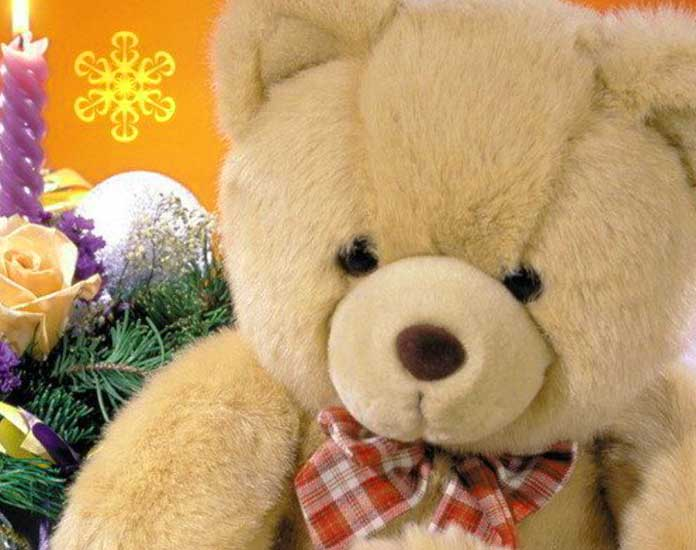Beautiful Teddy Bear Images Pics HD Wallpaper Download