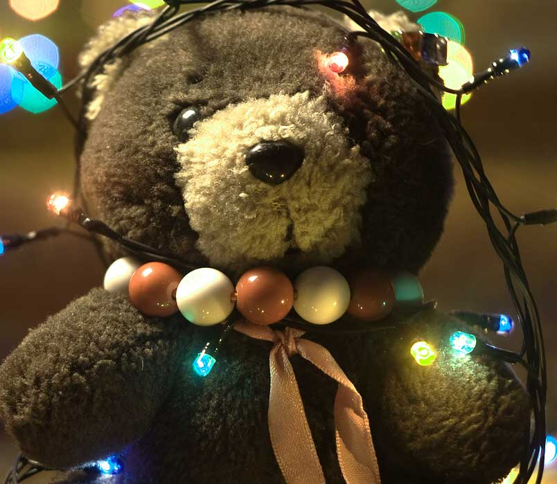 All Free Beautiful Teddy Bear Images Pics HD Pics Download